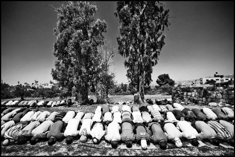 Protest_riot_palestine_israel_west_bank_ni'ilin_arab_jewish_conflict_war08_15_08_G6Y9673-Edit-Edit