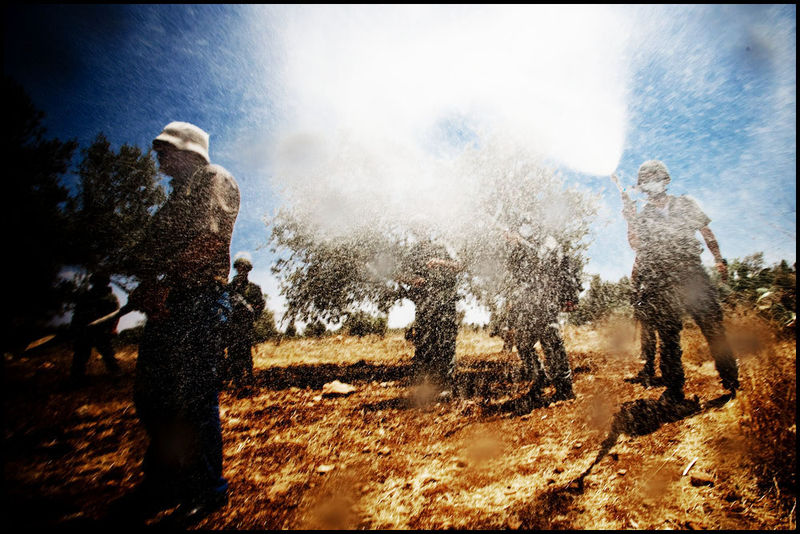 Protest_riot_palestine_israel_west_bank_ni'ilin_arab_jewish_conflict_war08_08_08_G6Y7503