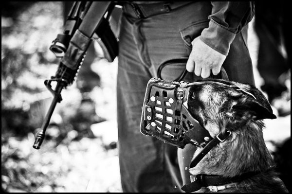 720034975f9 ZORIAH - A PHOTOJOURNALIST AND WAR PHOTOGRAPHER S BLOG  West Bank Protests  - Part 1