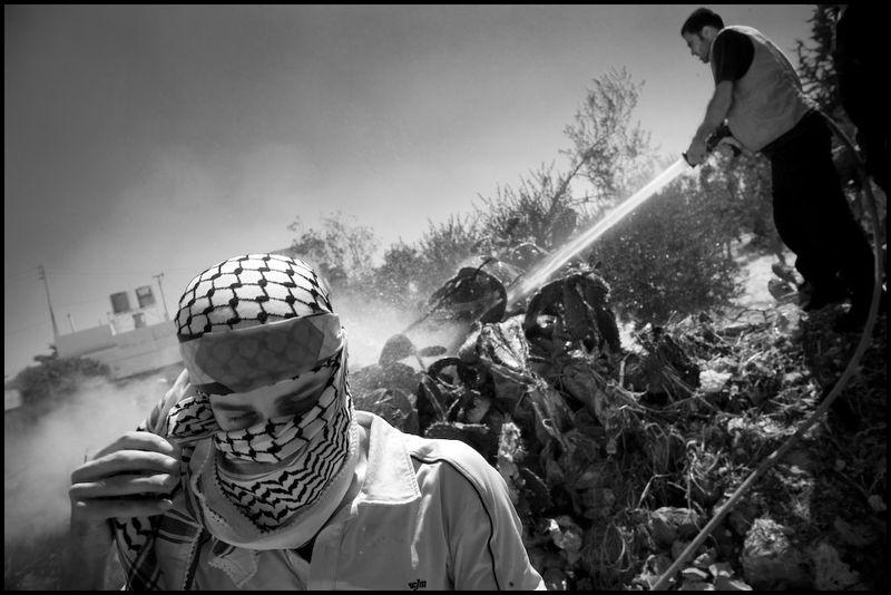 Zoriah_palestine_israel_protest_police_riot_west_bank_08_15_08_G6Y9786