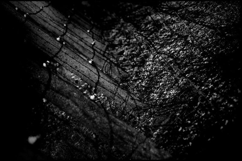 Zoriah_photojournalist_war_photographer_dachau_nazi_concentraion_camp_germany_20080826_0543