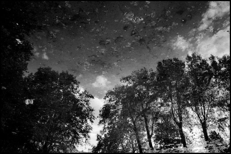 Zoriah_photojournalist_war_photographer_brussels_20090522_0044