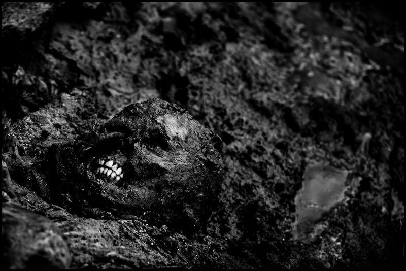 Zoriah_photojournalist_war_photographer_haiti_earthquake_port_au_prince_earth_quake_20100120_2832