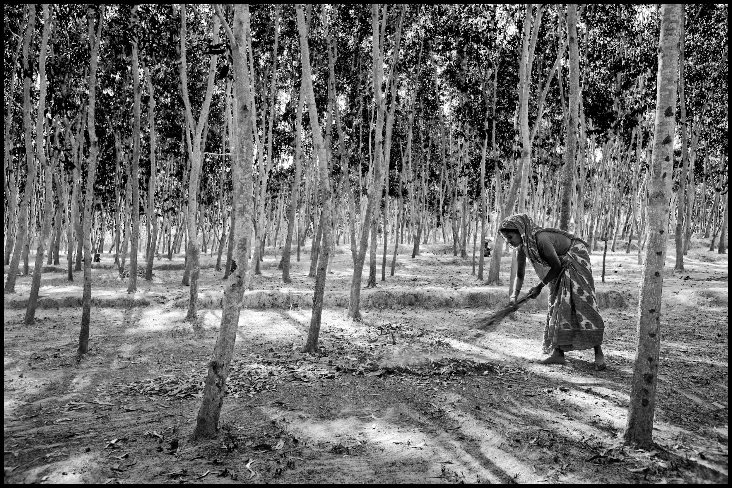 Zoriah A Photojournalist And War Photographers Blog Rohingya Sandal Connec Arizona Navy Fuchsia Woman 36 0001 Photographer Refugee 20100302 0347