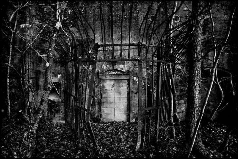 0001_zoriah_photojournalist_war_photographer_WWII_bunker_20090228_0362