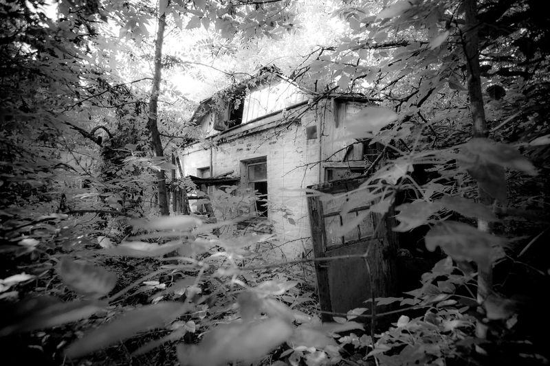 0001_zoriah_photojournalist_war_photographer_chernobyl_reclaimed_20140905_5501