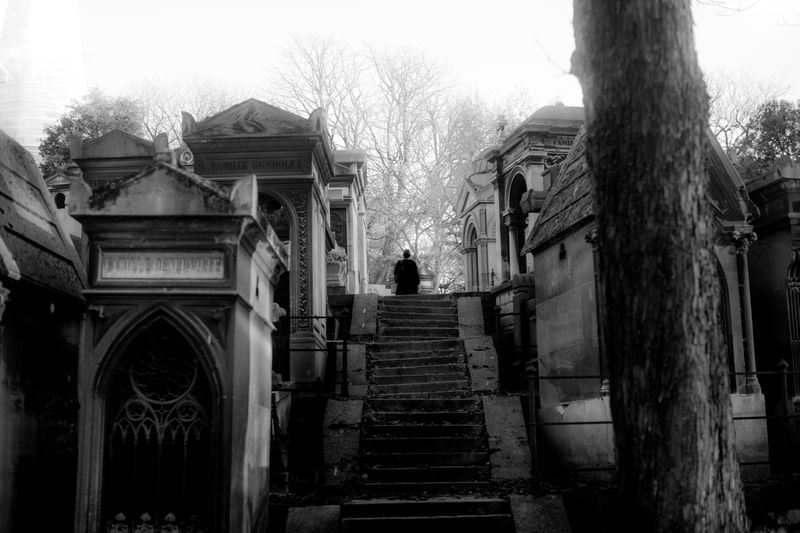0007_zoriah_photojournalist_war_photographer_paris_halloween_père_lachaise_cemetary_20151031_0365