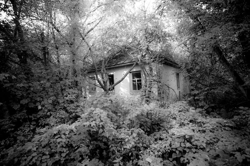 0002_zoriah_photojournalist_war_photographer_chernobyl_reclaimed_20140905_5576