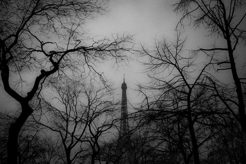 0001_zoriah_photojournalist_war_photographer_paris_france_20130328_3280035