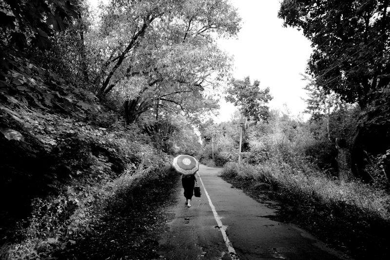 0001_zoriah_photojournalist_war_photographer_chernobyl_pripyat_umbrella_road_20120719_0109